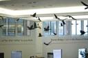 Raven Brings Light...Art Installation